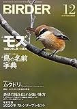 BIRDER(バーダー)2019年12月号 「田園の殺し屋」の真実 モズ/鳥の名前 字典 画像