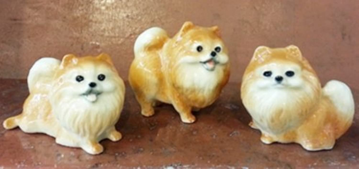 3 D Ceramic Toy Pomeranian Dog Dollhouse Miniatures Free Ship by ChangThai Design [並行輸入品]