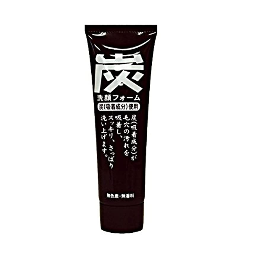 制限するハーブパスタ純ケミファ 炭 ジュンラブ MC洗顔フォーム 120g