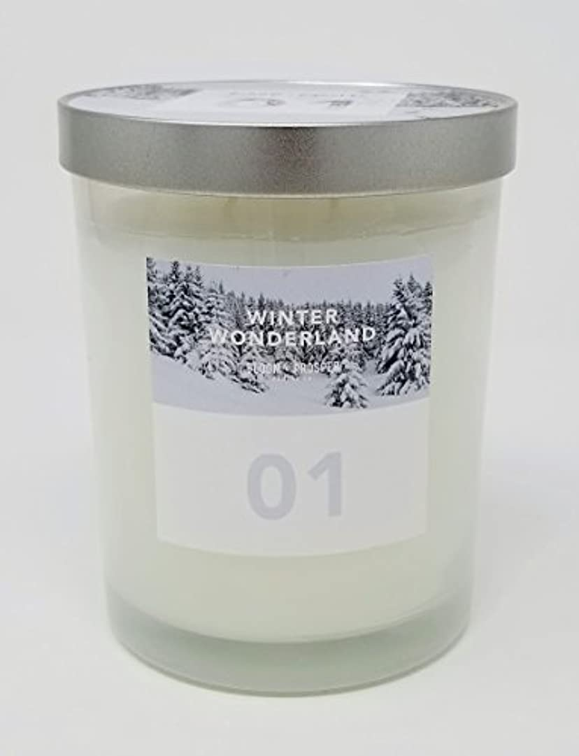 クライストチャーチ口述するパットBloom & Prosper no 1 Scented Candle – Winter Wonderland – 14.535 Oz