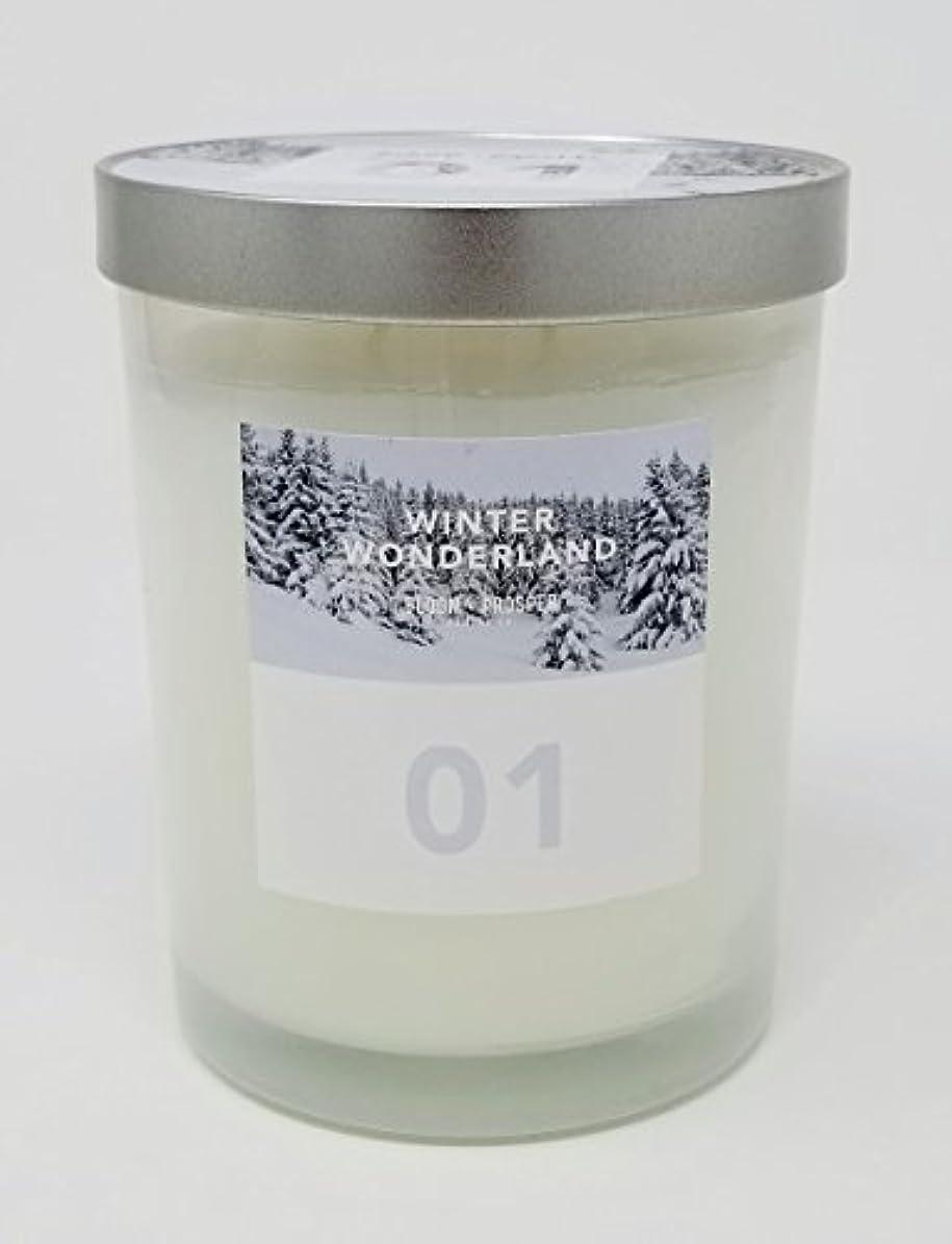 説明的名前を作る銅Bloom & Prosper no 1 Scented Candle – Winter Wonderland – 14.535 Oz