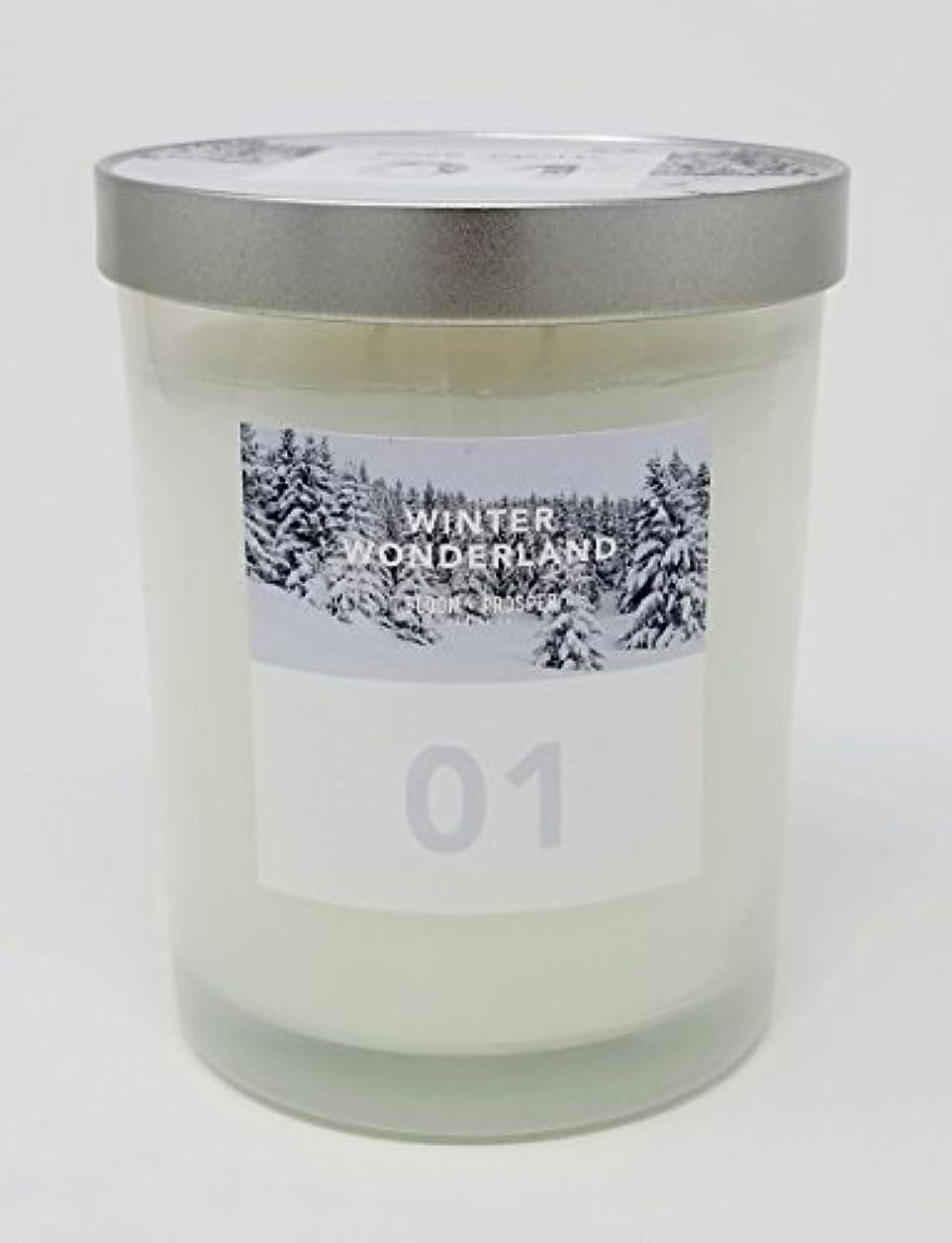 墓地子犬シャンプーBloom & Prosper no 1 Scented Candle – Winter Wonderland – 14.535 Oz
