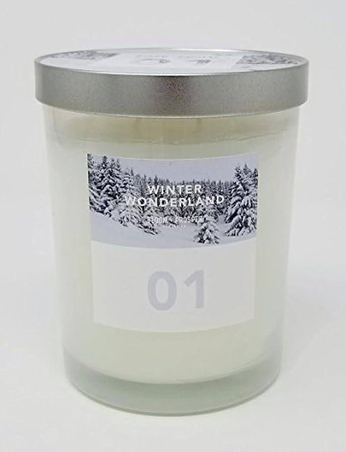 説明するモードリンフェリーBloom & Prosper no 1 Scented Candle – Winter Wonderland – 14.535 Oz