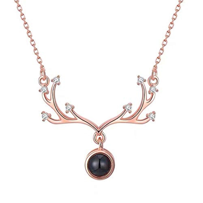 アントレネックレス ジュエリー 100種類言語愛してる 投影ネックレス 925スターリングシルバー 鎖骨鎖ネックレス アクセサリー きれい カップルAnoir-JP