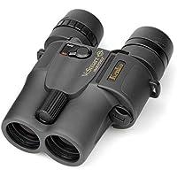 Kenko 防振双眼鏡 VC Smart 10×30 10倍 口径30mm 031940