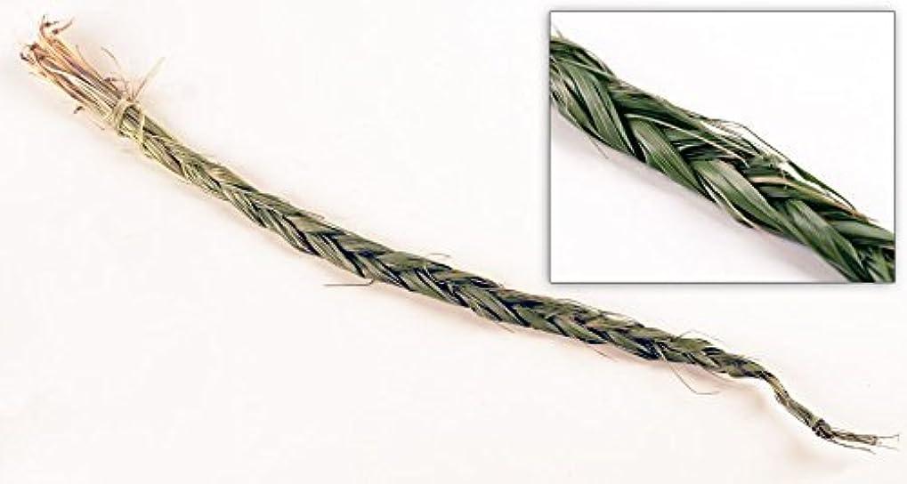 感謝祭ソケット豆Sweetgrass三つ編み