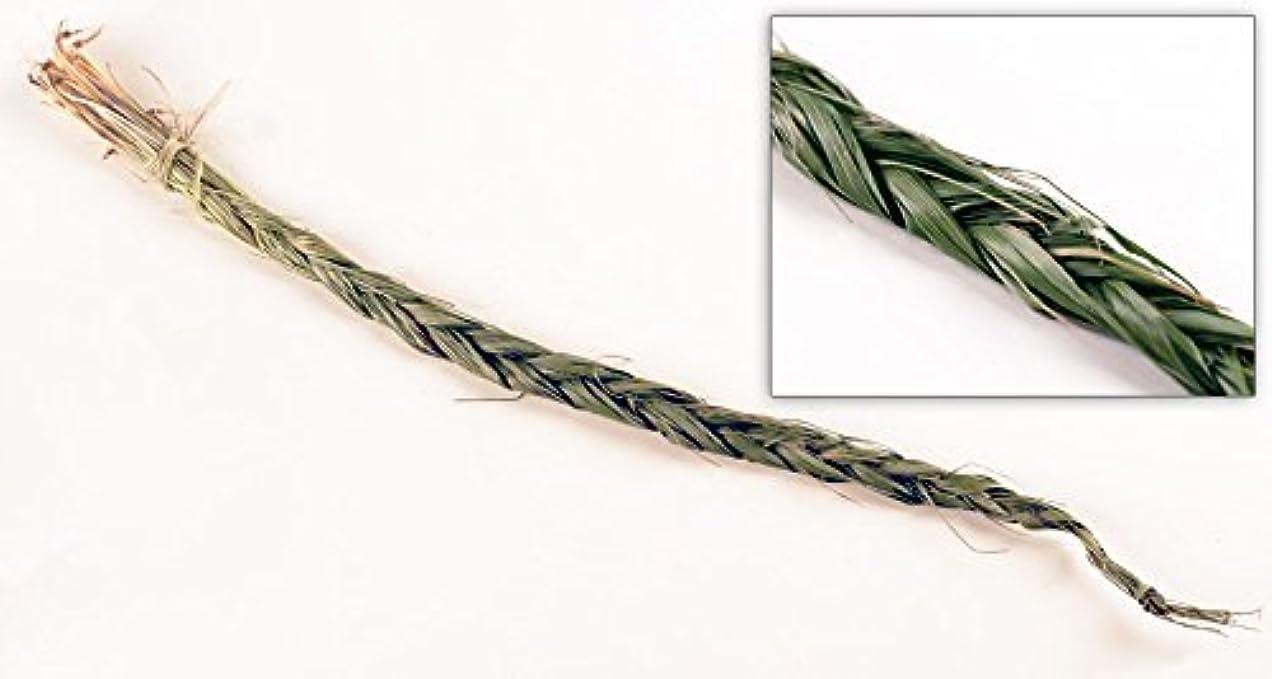 こしょう決定海岸Sweetgrass三つ編み