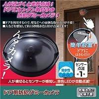 (まとめ)旭電機化成 ドア用防犯ダミーカメラ 810800【×5セット】