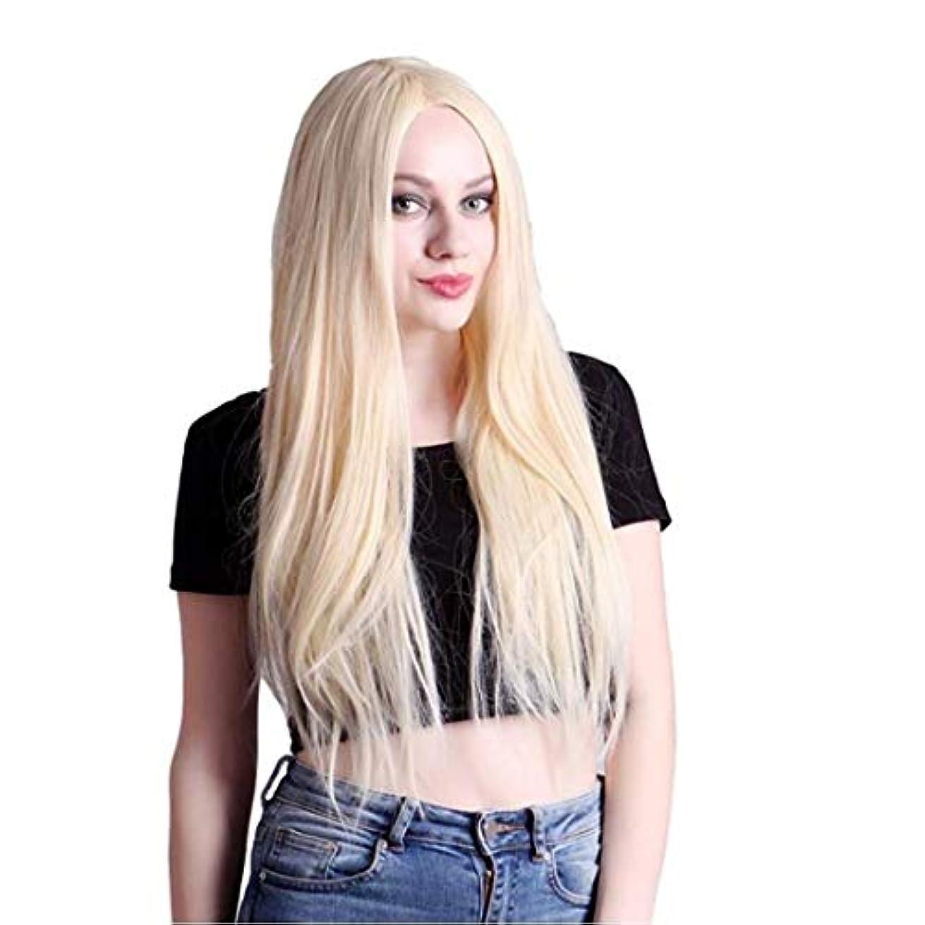 自発的実際の位置づけるKerwinner レディースウィッグ夏スタイルの完璧なヘアラインルートウィッグ人工毛フロントレースかつらすべての肌のトーンのシルクストレートヘア