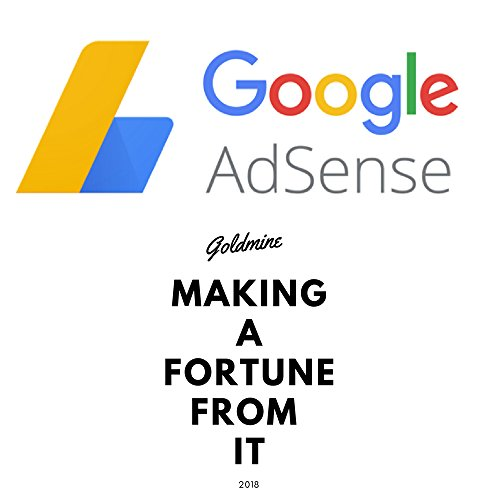 Google Adsense Goldmine Making A Fortune From It (English Edition)