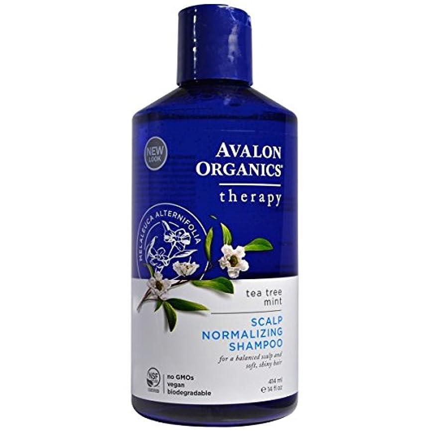 フレームワーク盲信怠感[海外直送品] アバロンオーガニック(Avalon Organics) ティーツリー ミント シャンプー 414ml