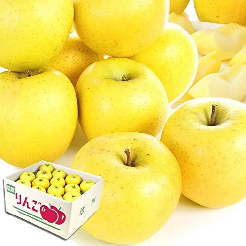 国華園 長野産 シナノゴールド 10kg1箱 りんご