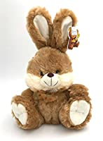 Brown Bunny Fluffy Plush Toy With Lighted Cheeks and Musical Cover Song 'You Are My Sunshine'