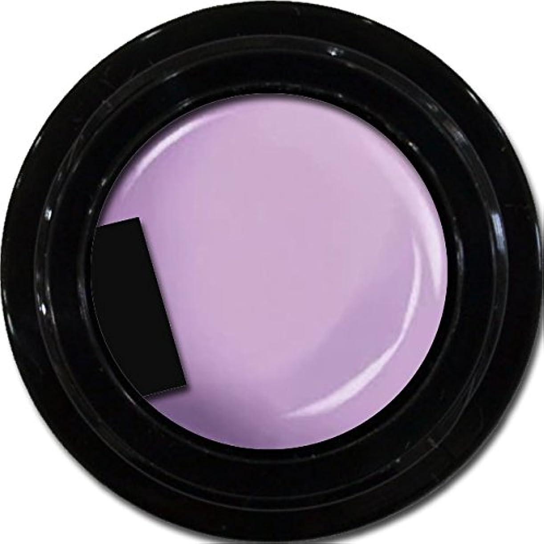 カラージェル enchant color gel M508 BlueberryCheesecake 3g/ マットカラージェル M508 ブルーベリーチーズケーキ 3グラム
