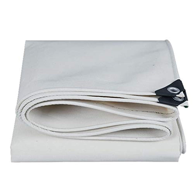 装置ラテン飛躍防水ターポリン防水ヘビーデューティ防水シートトラック小屋布テントアンダーレイ - キャンプ用、屋外用、マルチサイズオプションプールカバーターポリン(ホワイト) FENGMIMG (色 : 白, サイズ さいず : 3mx3m)
