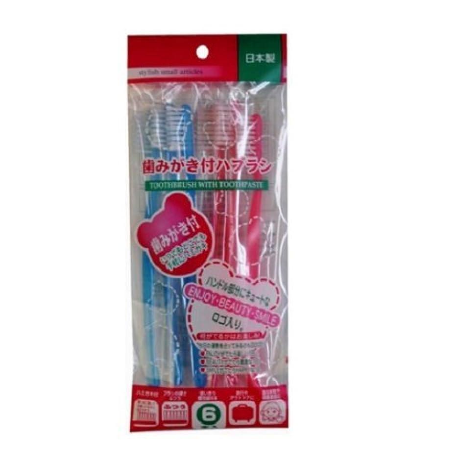 貫通する保護する電圧歯みがき付ハブラシ 6本入