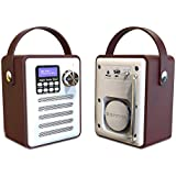 TOOGOO Dab/Dab+ Tuner Digital Radio Receiver Bluetooth 5.0 Fm Broadcast Aux-in Mp3 Player Support Tf Card Built-in Battery