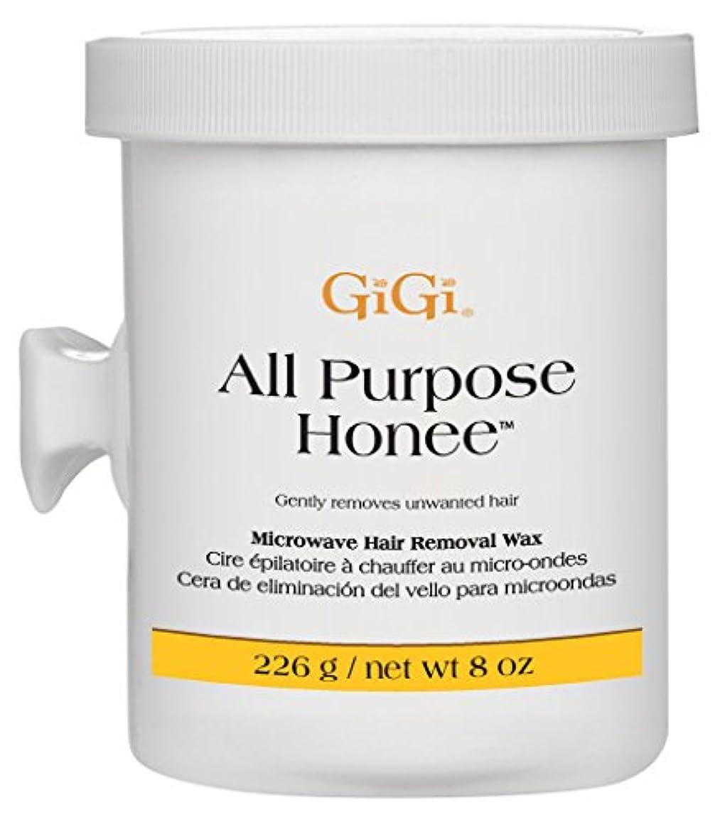 ヘアトライアスロンロケット(3 Pack) GIGI All Purpose Honee Microwave - GG0365 (並行輸入品)