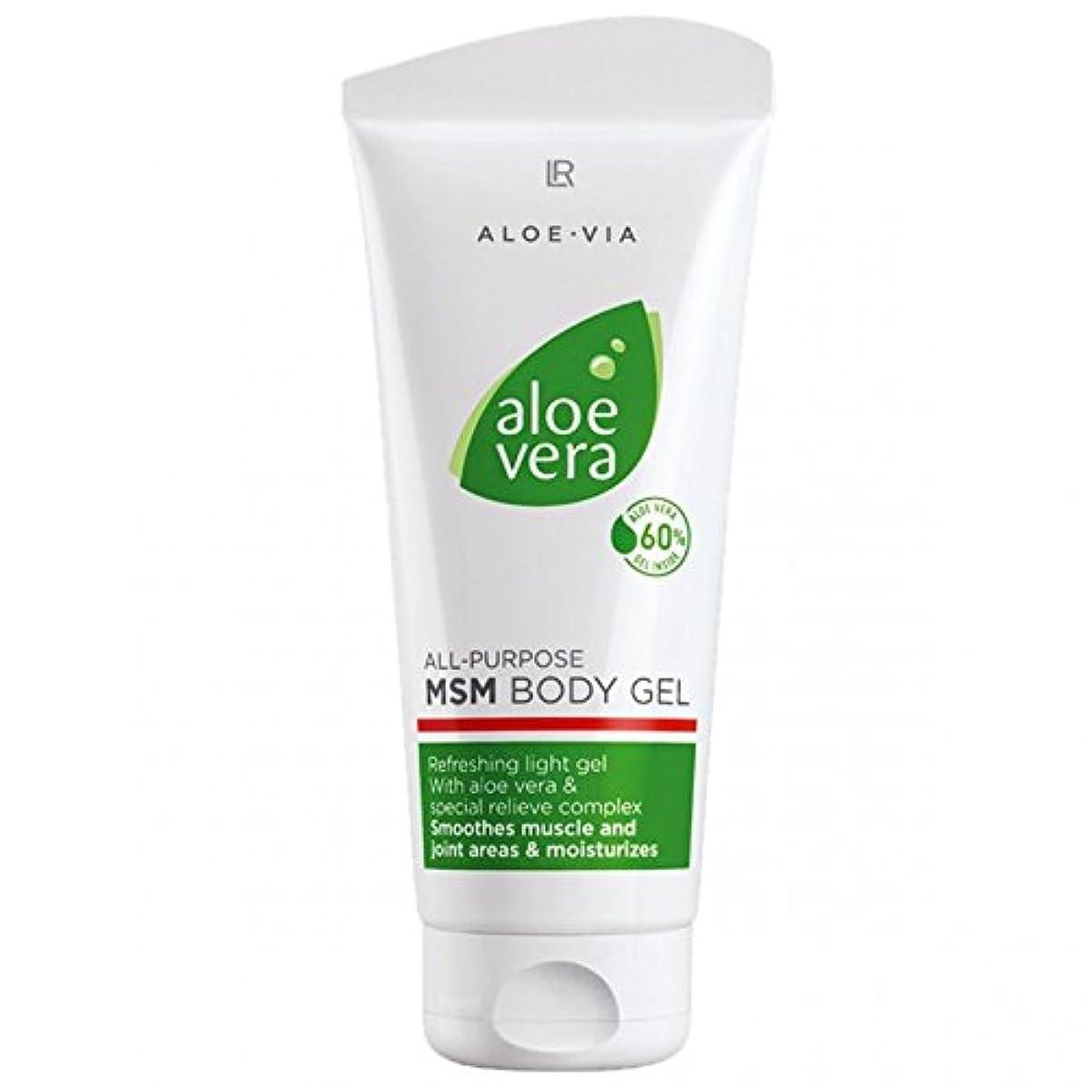 扱いやすい冷笑する再編成するL R アロエベラMSMボディジェル美容や化粧品、滑らかな、迅速な吸収ゲル%60アロエベラ200ミリリットル
