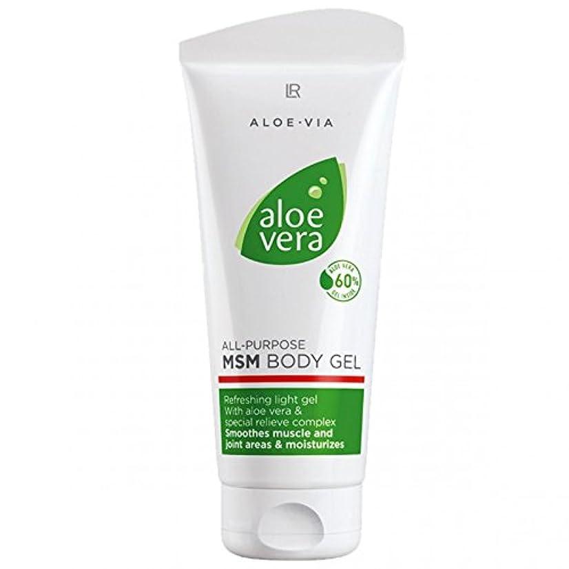 石鹸変形する変形するL R アロエベラMSMボディジェル美容や化粧品、滑らかな、迅速な吸収ゲル%60アロエベラ200ミリリットル