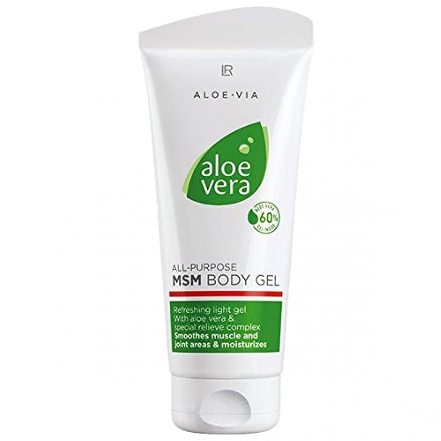 遷移前兆加入L R アロエベラMSMボディジェル美容や化粧品、滑らかな、迅速な吸収ゲル%60アロエベラ200ミリリットル