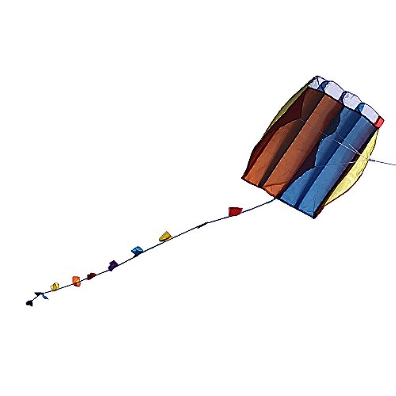 凧 カイト 凧揚げ グングン急上昇 カラフル 骨無し 凧糸付き