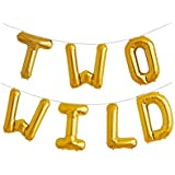 Two Wild 16 inch Foil Balloons 2nd Birthday Balloon Backdrop Banner for Boy or Girl Jungle Dinosaur Safari Party Supplies Decorations