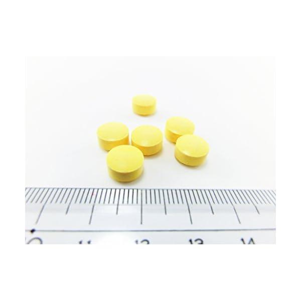 小林製薬の栄養補助食品 ビタミンC お徳用 約...の紹介画像3