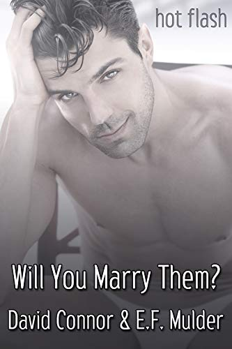 Will You Marry Them? (Hot Flash) (English Edition)