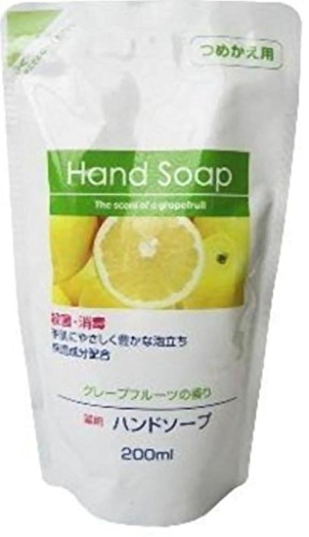 傾くトロイの木馬モート第一石鹸 薬用ハンドソープ詰替