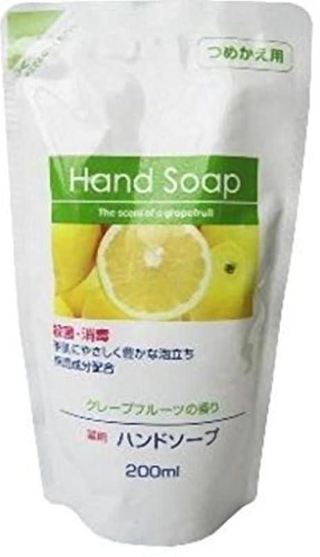連合加速する過剰第一石鹸 薬用ハンドソープ詰替