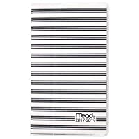 Mead Academic Year Monthly Planner/Appointment Book July 2017 - June 2019 2 year 3-3/8 x 6-3/16 School Simplicity Stripes (CAM301D2) [並行輸入品]