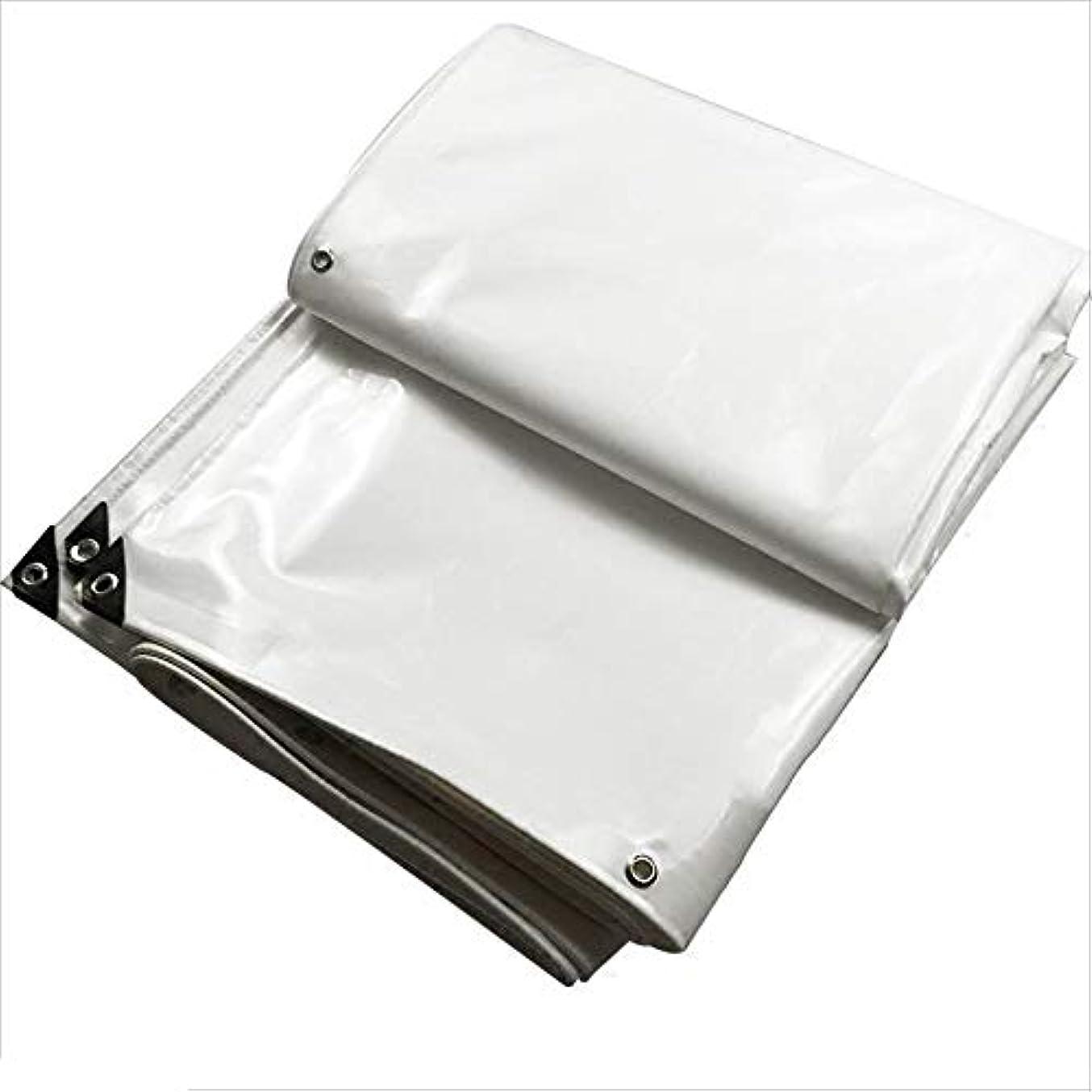 ラグ在庫属性LPKH 白い防水シートの防水日焼け止めポリ塩化ビニールの布の駐車小屋の布の防水シートの地面シートカバー (サイズ さいず : 4*6m)