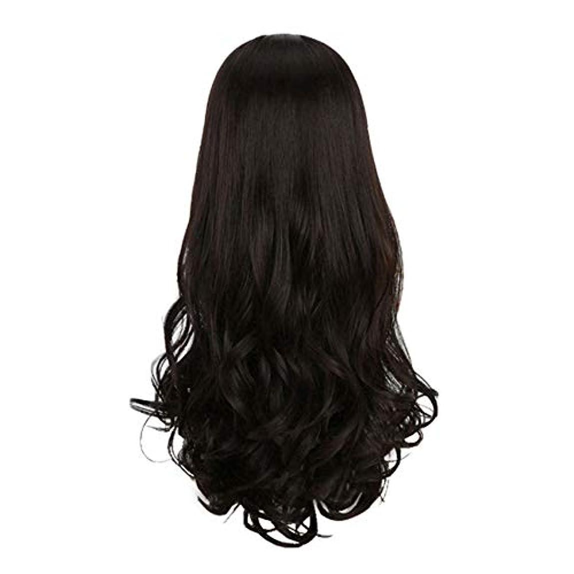 無関心すなわち締めるヘアピースブラックかつらフルヘッドカーリーウェーブクリップオン人工毛エクステンションヘアピース女性用ロング気質かつらナチュラル、ブラック