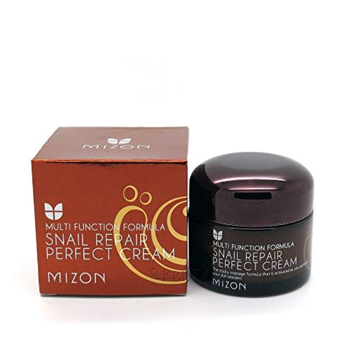 シリンダー驚いた粒子MIZONカタツムリRIRパーフェクトクリーム50ml韓国化粧品しわ