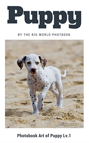 Puppy by The Big World Photobook : The Dog,My Dog,Cats,Dog,Cat Dog,Black Cat,White Kitten,Black Kitten,Kittens,Kitten Feed,Puppy,Kitten Food,Cute Kitten,Baby ... (Photobook Art of Puppy 1) (English Edition)