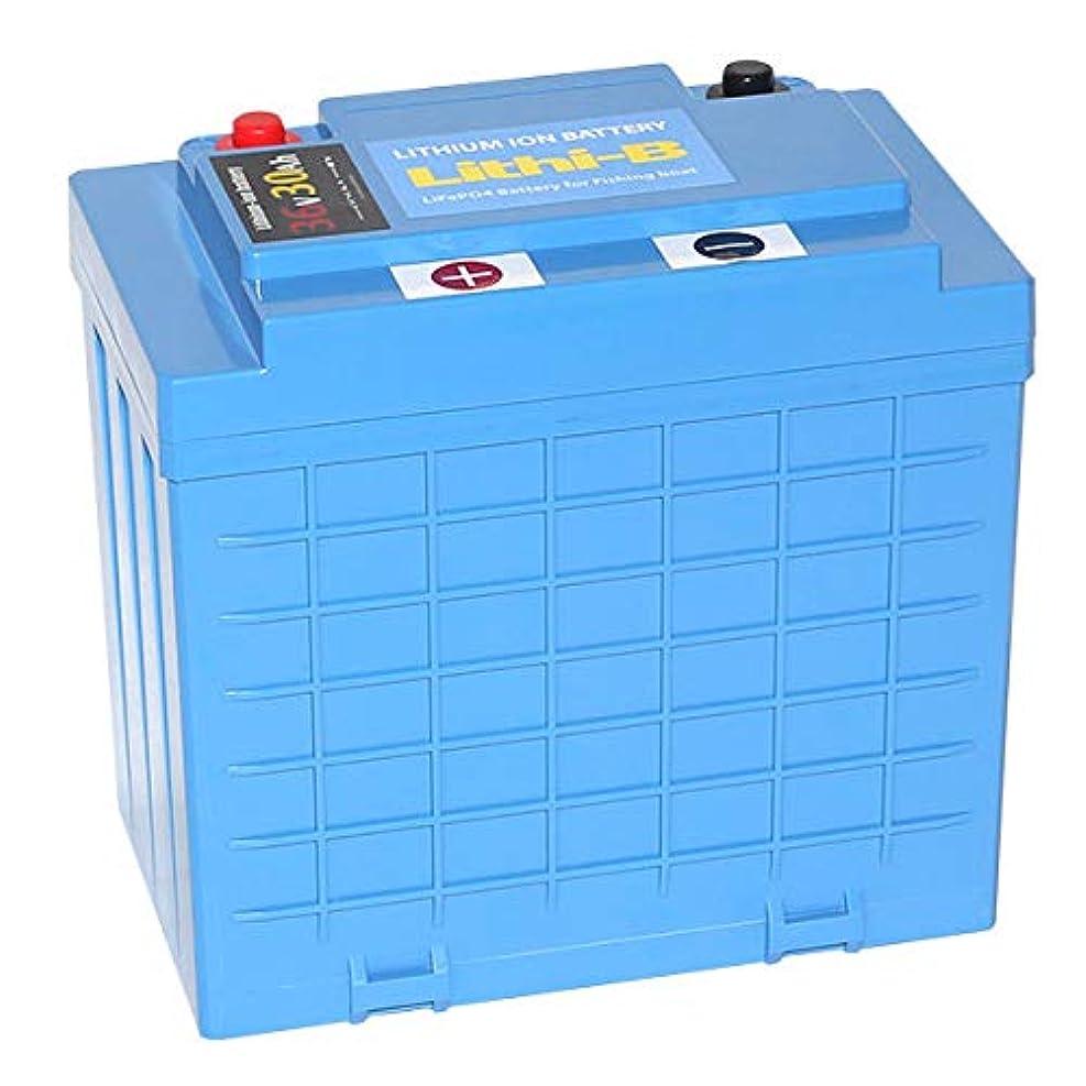 接辞落ち込んでいる取り壊すLifePO4 リチウムバッテリー リチビー(Lithi-B) 36V 30Ah