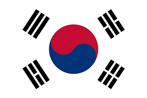 世界の 国旗 スポーツ 観戦 応援 各国 料理 日本 アメリカ イギリス フランス イタリア etc 90㎝×150㎝ (韓国)