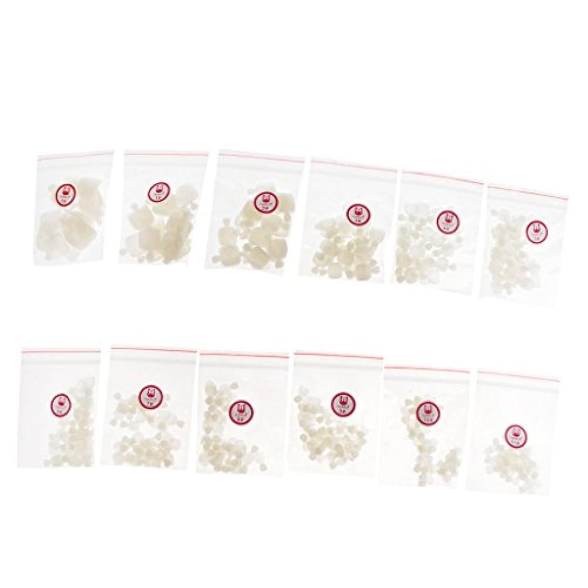 大臣雑種ほんのCUTICATE 足用 ネイルチップ フットネイルチップ 約504個 通気性 全3色 - ナチュラル