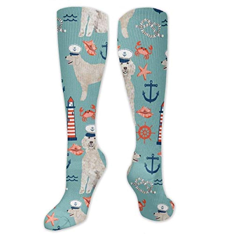 同化する興奮西男性の女性(20-30 mmHg)のためのQrriyゴールデン落書き海綿犬3 D圧縮靴下