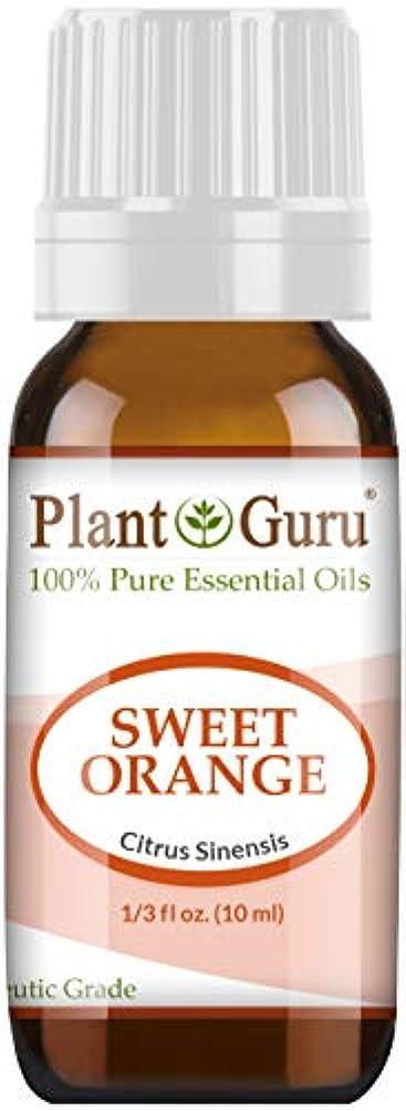 行う助言する宣言Sweet Orange Essential Oil. 10 ml. 100% Pure, Undiluted, Therapeutic Grade. by Plant Guru