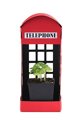 癒やす LED栽培キット / Fresco ペーパーガーデン 電話ボックス