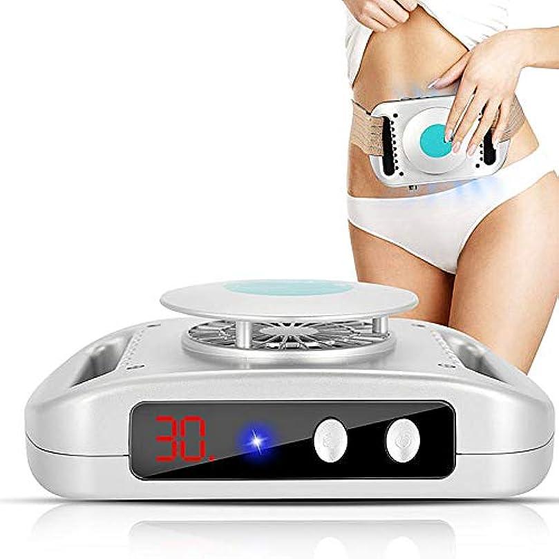 趣味メタリック学部長女性男性のためのトレーナーベルトが付いているボディ痩身の美装置の脂肪分解の物質の冷たい凍結の形成の重量の脂肪質の損失機械