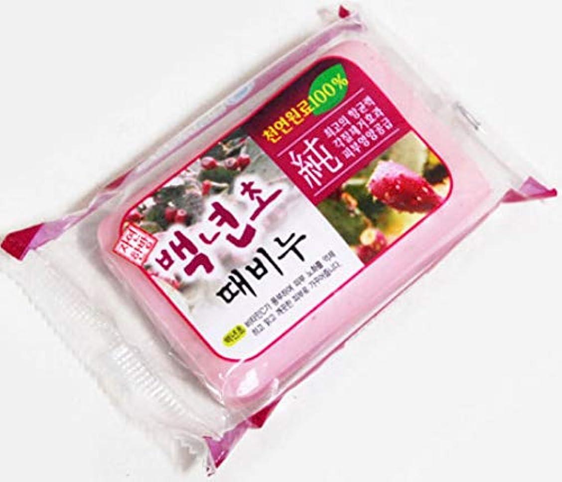 血まみれジム病的百年草のアカスリ石ケン、韓国本場の業務用アカスリせっけん、