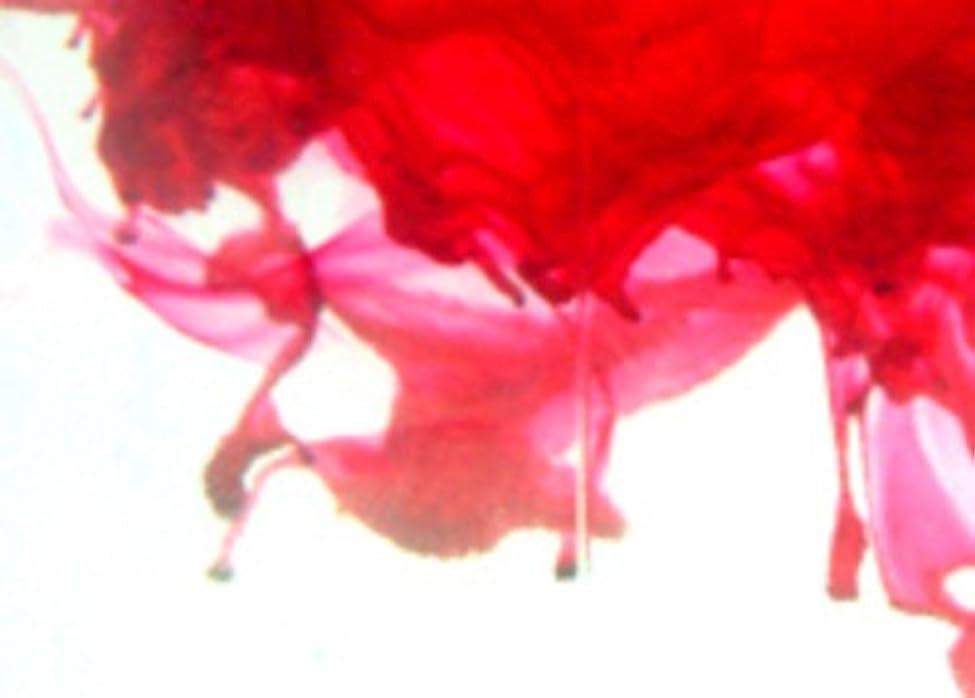 異邦人ご飯描写Fuchsia Soap Dye 50ml - Highly Concentrated