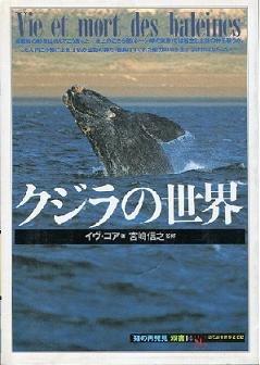 クジラの世界 (「知の再発見」双書)の詳細を見る