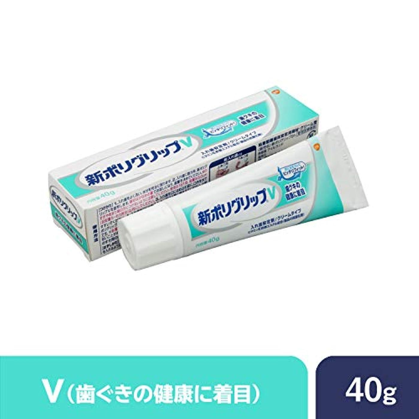 ストライドカートン投獄部分?総入れ歯安定剤 新ポリグリップ V(歯グキの健康に着目) 40g