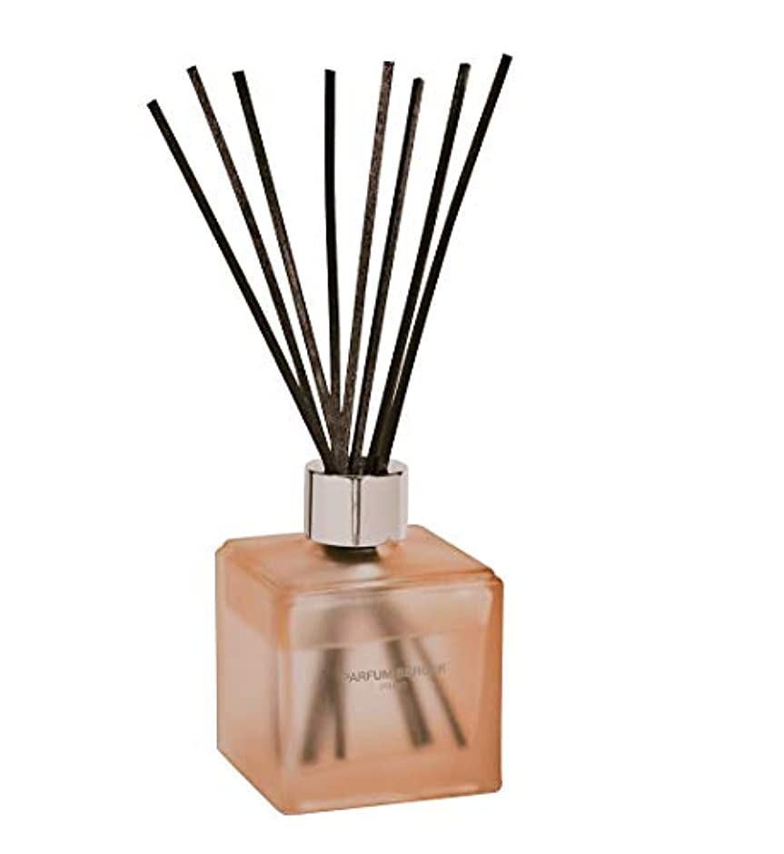 暖かく爆発するアンドリューハリディランプベルジェ Functional Cube Scented Bouquet - Neutralize Pet Smells (Floral and Zesty) 125ml/4.2oz並行輸入品