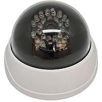 キャロットシステムズ 防犯・監視カメラ ホワイト 12.8×8.8cm DD-128