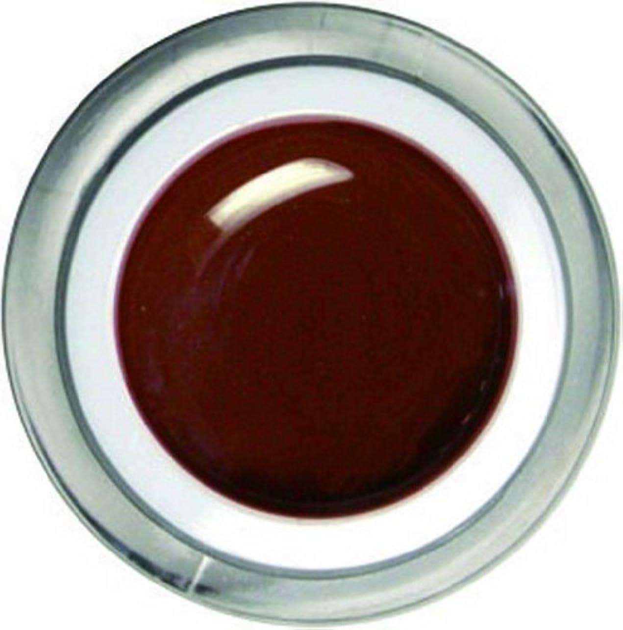 タンパク質トランクティームメロディコ メロディコジェル #12ブラウン